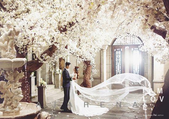 weddingphoto_campaign_bong