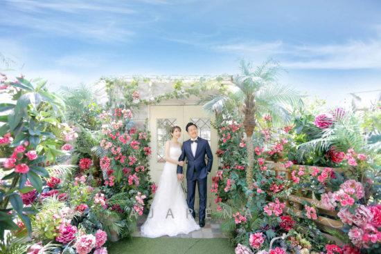 weddingphoto_genius_2