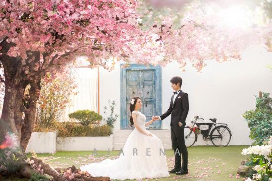 桜の木のセット